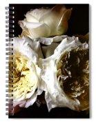 Austin Roses Notan Spiral Notebook