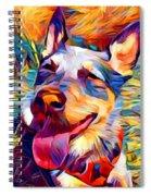 Australian Cattle Dog 2 Spiral Notebook