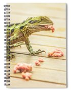Australian Water Dragon Spiral Notebook