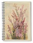 Australian Wild Flowers  8 Spiral Notebook
