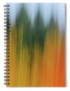 Autumn And Evergreen Spiral Notebook