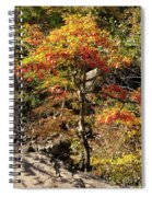 Autumn Color In Smoky Mountains National Park Spiral Notebook