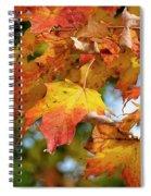 Autumn Colour Spiral Notebook
