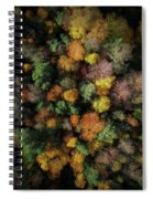Autumn Forest - Aerial Photography Spiral Notebook