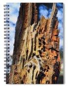 Autumn Knotty Tree Sculpture Spiral Notebook