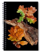 Autumn Oak Leaves And Acorns On Black Spiral Notebook