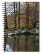 Autumn On The Kings River Spiral Notebook