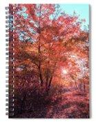 Autumn Path Reimagined Spiral Notebook