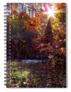 Autumn Starburst Spiral Notebook