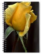 Autumn Yellow Rose Spiral Notebook
