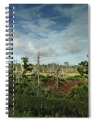 Autumnal Altamaha Spiral Notebook