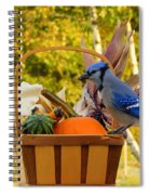 Autumn's Bounty Spiral Notebook