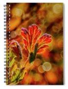 Autumn's Glow 2 Spiral Notebook