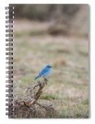 B10 Spiral Notebook