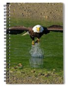 Bald Eagle Catching A Fish Spiral Notebook