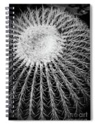 Barrel Cactus Black And White Spiral Notebook