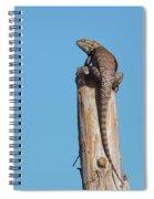 Basking Lizard Spiral Notebook
