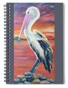 Bayou Pelican / Modern Ibis Spiral Notebook