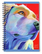 Be Golden Spiral Notebook