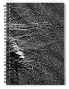 Beach Bones 7 Spiral Notebook