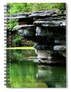 Bear Springs Spiral Notebook