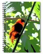 Beautiful Creature Spiral Notebook