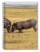 Beauty On The Hoof, The Warthog Spiral Notebook