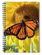 Beauty On The Sunflower Spiral Notebook