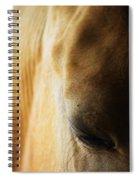 Beauty Sleep Spiral Notebook
