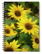 Bee And Sunflowers Spiral Notebook