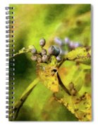 Berries And Aging Leaves 5709 Idp_2 Spiral Notebook