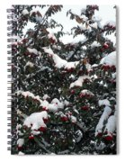 Berries And Snow Spiral Notebook