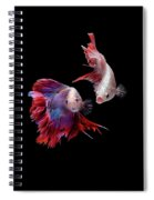 Betta0093 Spiral Notebook