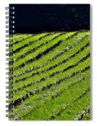 Between The Rows Spiral Notebook