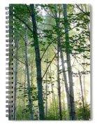 Beyond The Mist Spiral Notebook