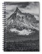 Big Cowhorn Spiral Notebook