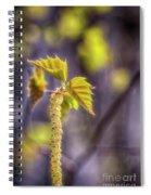 Birch Blooms Spiral Notebook