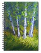 Birch Light Landscape Spiral Notebook