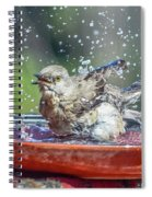 Bird In A Bath Spiral Notebook