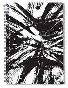 bk Spiral Notebook