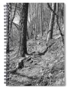 Black And White Mountain Trail Spiral Notebook