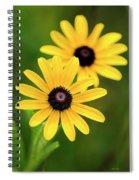 Black Eyed Susans Spiral Notebook