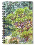 Blake Garden, Berkeley Ca Spiral Notebook