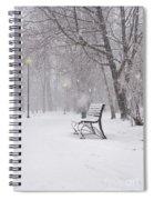 Blizzard In The Park Spiral Notebook