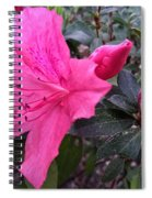 Bloom And Bud Spiral Notebook