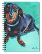 Blue Dachshund  Spiral Notebook