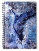 Blue Hummingbird Spiral Notebook