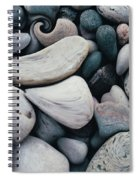 Blue Rock Garden Spiral Notebook