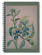 Blueberries At Lake Pickerel Spiral Notebook