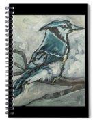 Bluejay Spiral Notebook